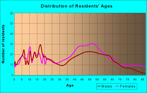 Age and Sex of Residents in Village East in South Holland, IL