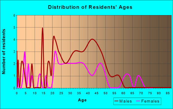 Age and Sex of Residents in Randolph-Roanoke in Peoria, IL