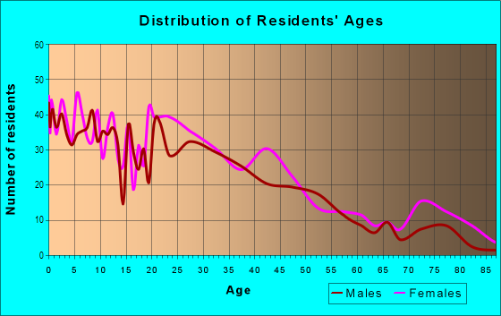 Age and Sex of Residents in Cleghorn Area in Fitchburg, MA