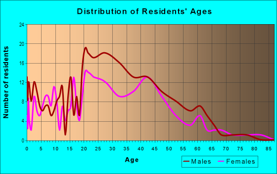 Age and Sex of Residents in Arts District in Worcester, MA