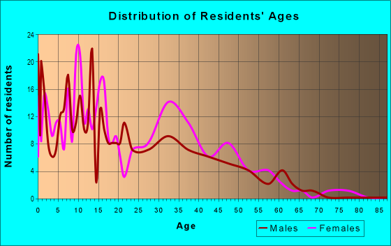 Age and Sex of Residents in Boston Square in Grand Rapids, MI