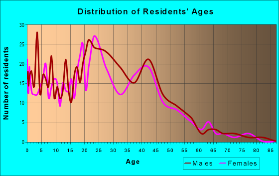 Age and Sex of Residents in REO Town in Lansing, MI