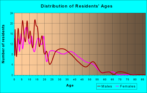 Age and Sex of Residents in Amistad Estates in Somerton, AZ