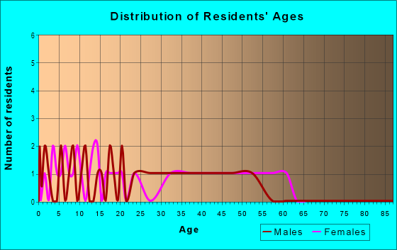 Age and Sex of Residents in Downtown Uniondale in Uniondale, NY