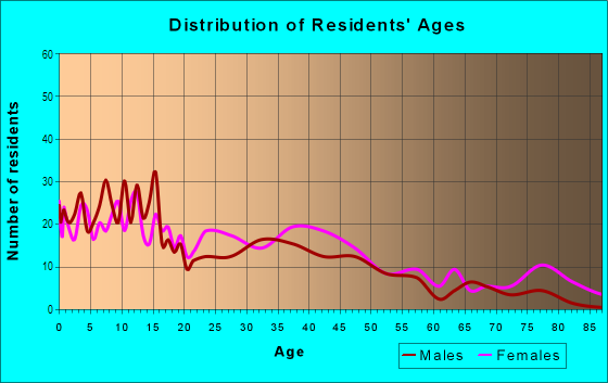 Age and Sex of Residents in Skunk City in Syracuse, NY