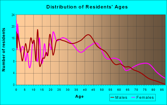 Age and Sex of Residents in Downtown Elyria in Elyria, OH