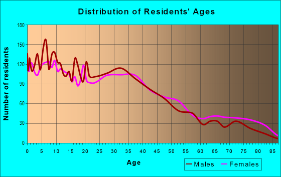 Age and Sex of Residents in Outlet District in Reading, PA