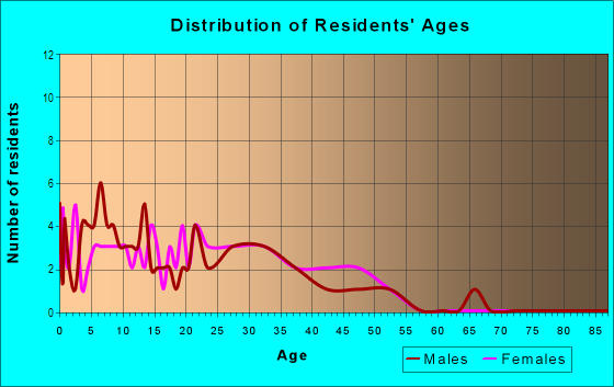 Age and Sex of Residents in Winsor Place Apts in Plano, TX