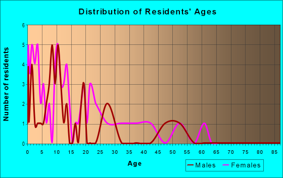 Age and Sex of Residents in Ed Bluestein in Austin, TX