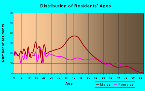 Age and Sex of Residents in Dorado in Houston, TX