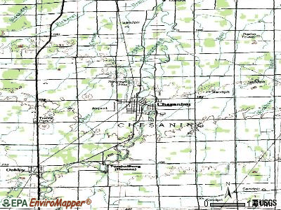 Chesaning topographic map