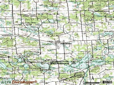 Pinckney topographic map