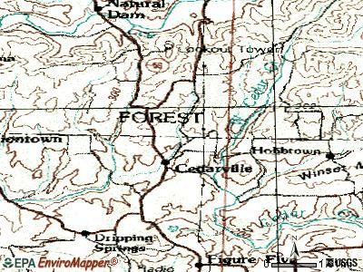 Cedarville topographic map