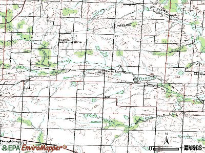 East Lynne topographic map