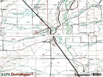 Wilsall topographic map