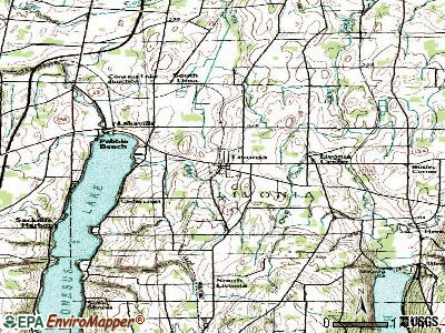 Livonia topographic map