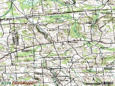 Elbridge topographic map