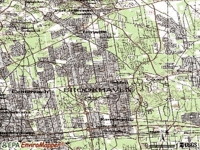 Selden topographic map