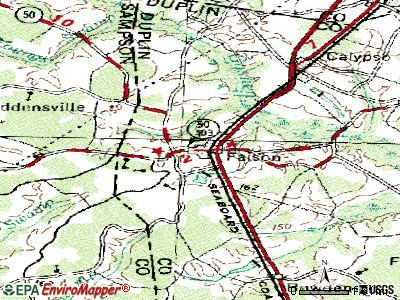 Faison topographic map