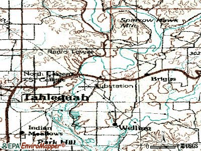 Briggs topographic map
