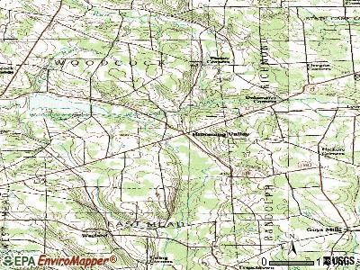 Blooming Valley topographic map