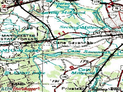 Cane Savannah topographic map
