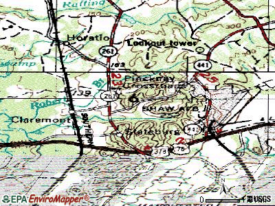 Stateburg topographic map