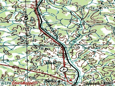Bethel Springs topographic map