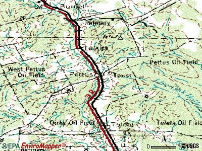 Pettus topographic map