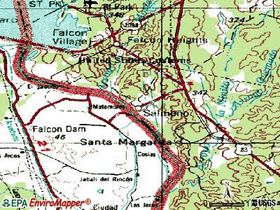 Salineno topographic map