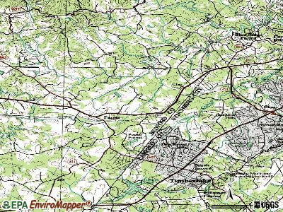 Forest topographic map