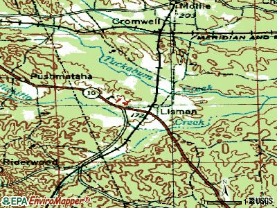 Lisman topographic map