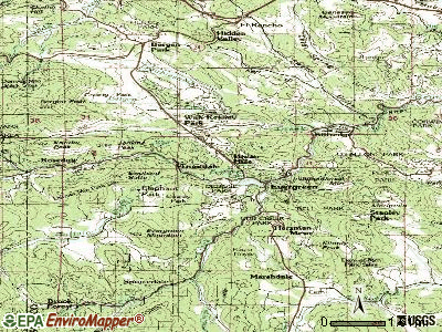 Evergreen topographic map