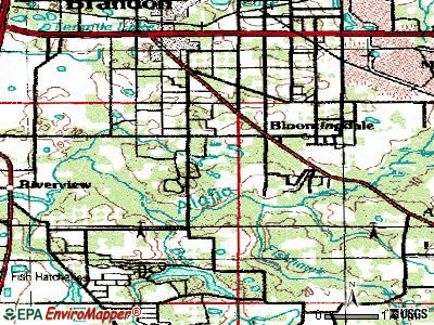 Bloomingdale topographic map