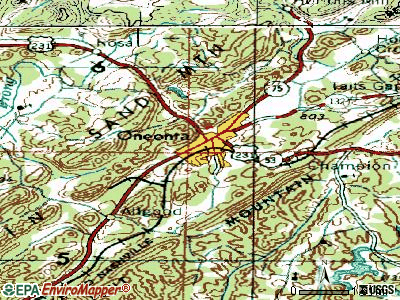 Oneonta topographic map