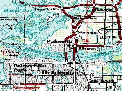 Palmetto topographic map