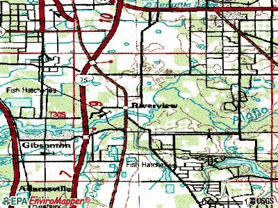 Riverview topographic map