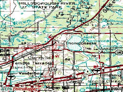 Thonotosassa topographic map