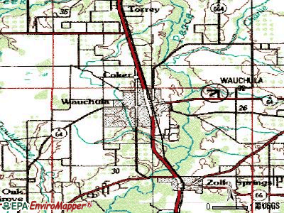 Wauchula topographic map