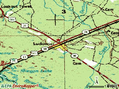 Ludowici topographic map