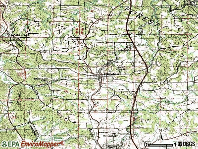 Cobden topographic map