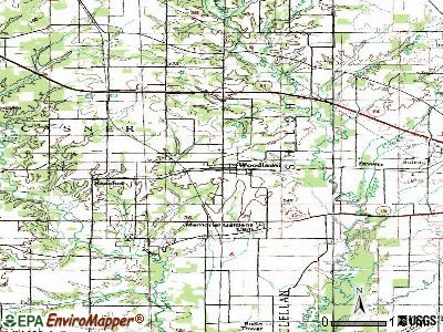 Woodlawn topographic map