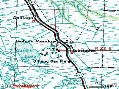 Golden Meadow topographic map