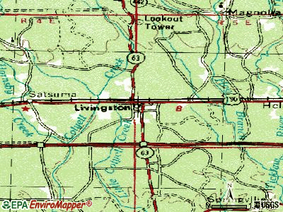 Livingston topographic map