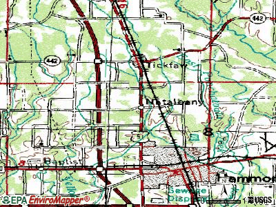 Natalbany topographic map