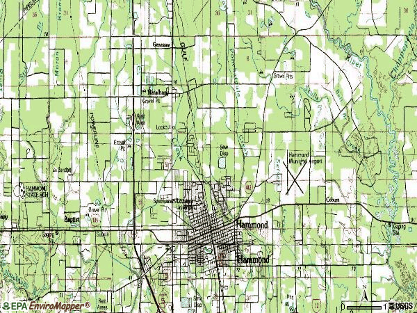 Zip code 70401 topographic map
