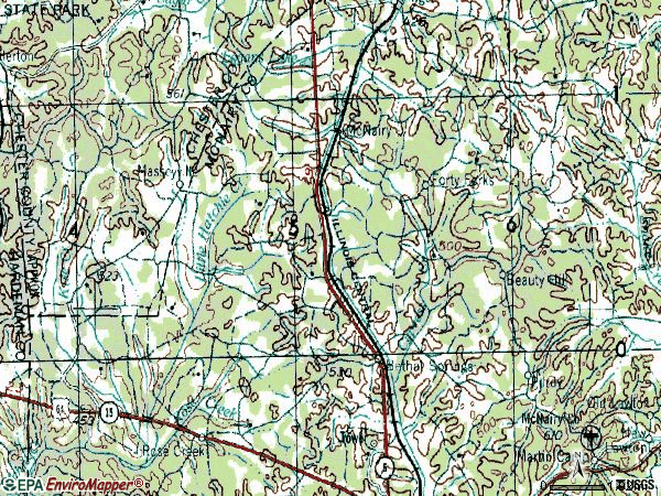 Zip code 38315 topographic map